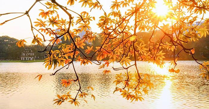 Du lịch mùa thu: Những địa điểm đẹp nhất Bắc Bộ