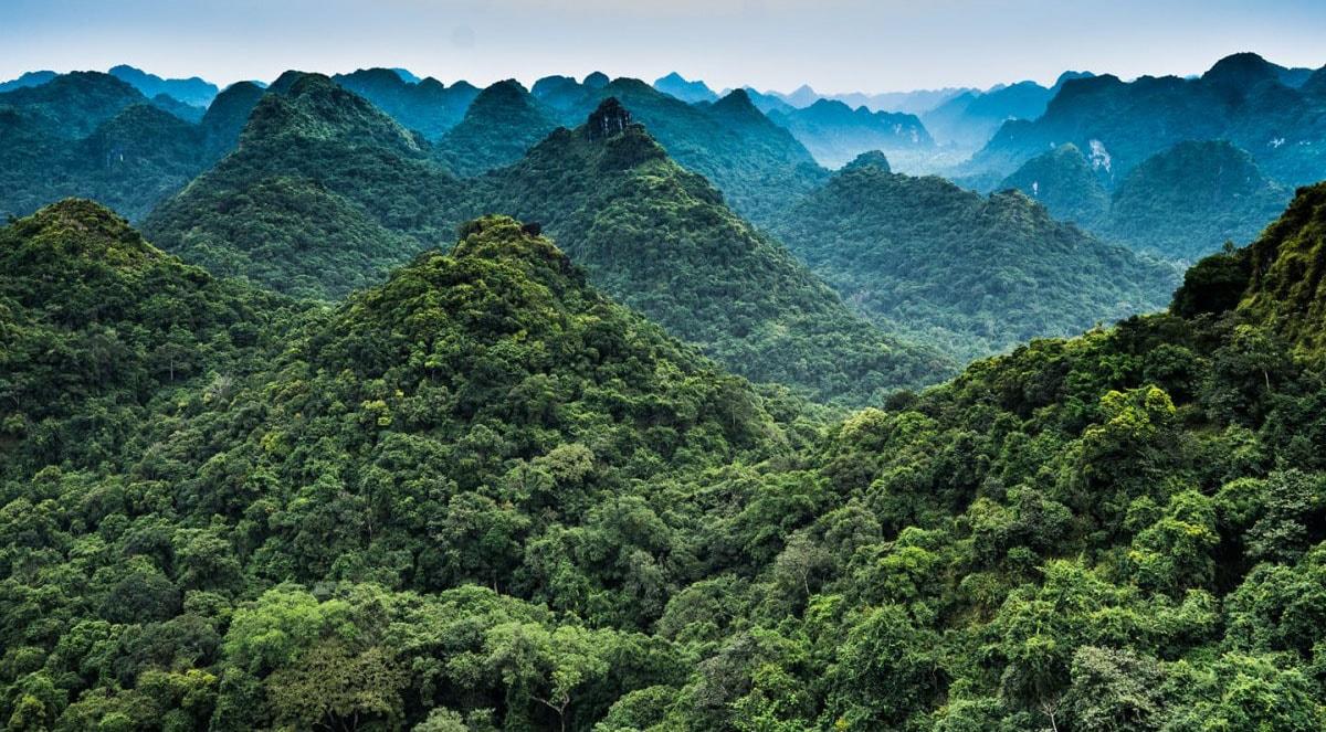 Vườn quốc gia Cát Bà, điểm đến hấp dẫn đối với những ai yêu thích du lịch mạo hiểm